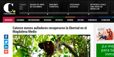 Catorce monos aulladores recuperaron la libertad
